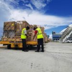 Cargo-partner banking on charter flights to meet tight deadlines in COVID times